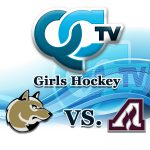Girls Hockey - Andover vs Anoka