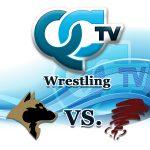 wrestling-andover-vs-anoka